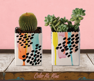 Fort Collins Drippy Square Planters