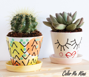 Fort Collins Cute Planters